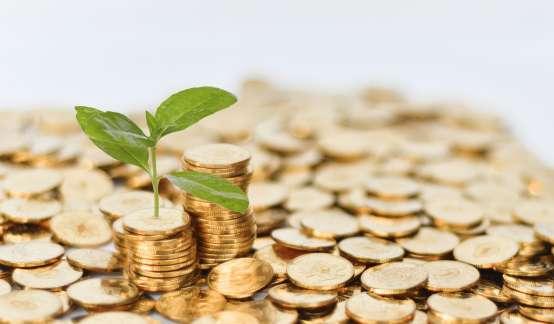 米凯利斯:产生现金的能力是衡量盈利能力的重要指标