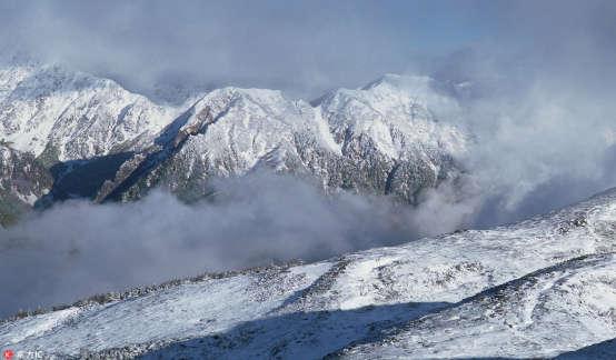 扑朔迷离的就业:究竟怎样一个冬天?