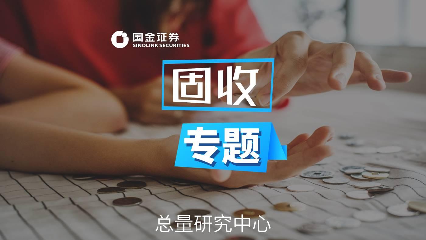 「国金研究」城投非标手册——西南篇(2019版)