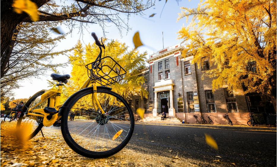 资本、流量和造神:共享单车的风向标