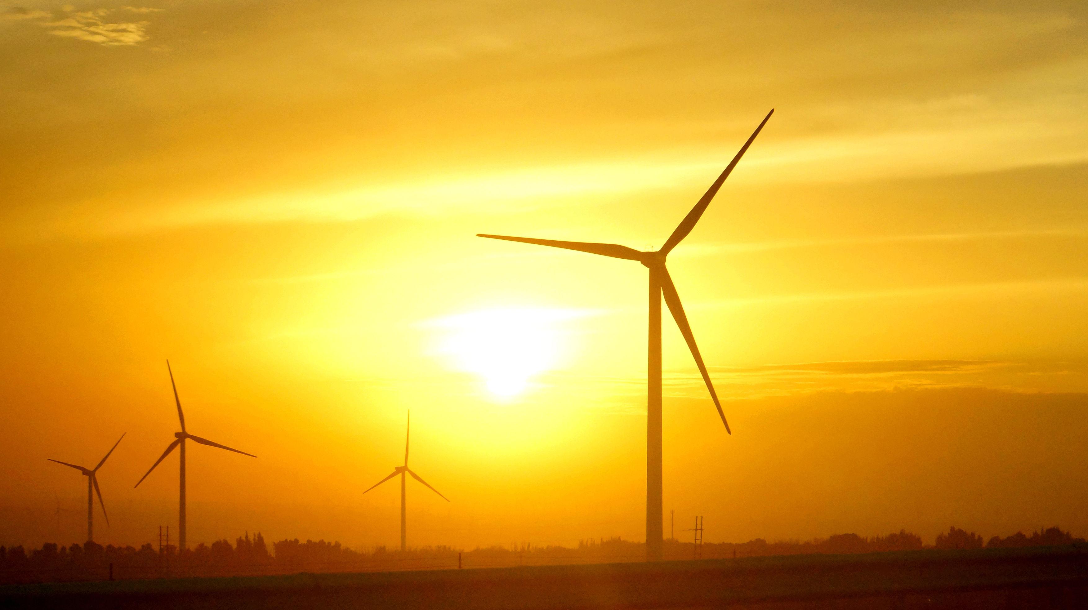 李湛:新能源汽车行业料迎大洗牌