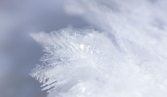 郭广昌:这个冬天会非常冷,能救你的只有你自己!